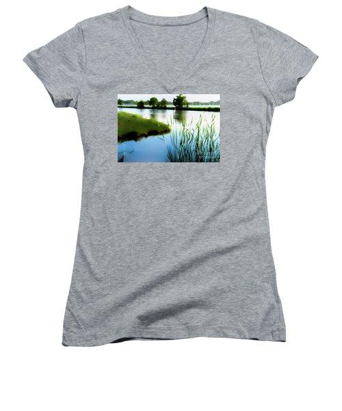 Summer Dreams Women's V-Neck T-Shirt (Junior Cut) by Betty LaRue