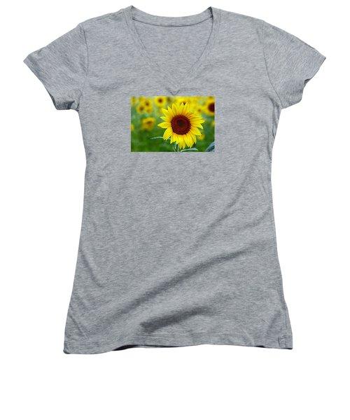 Sunflower Time Women's V-Neck T-Shirt