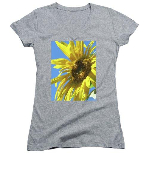 Sunshine In The Garden 28 Women's V-Neck T-Shirt