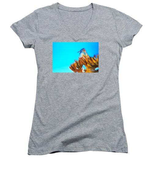 The Cactus Wren Women's V-Neck T-Shirt