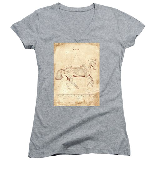 The Horse's Canter Revealed Women's V-Neck T-Shirt
