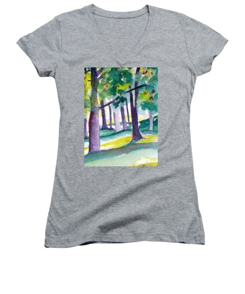 The Perfect Day Women's V-Neck T-Shirt