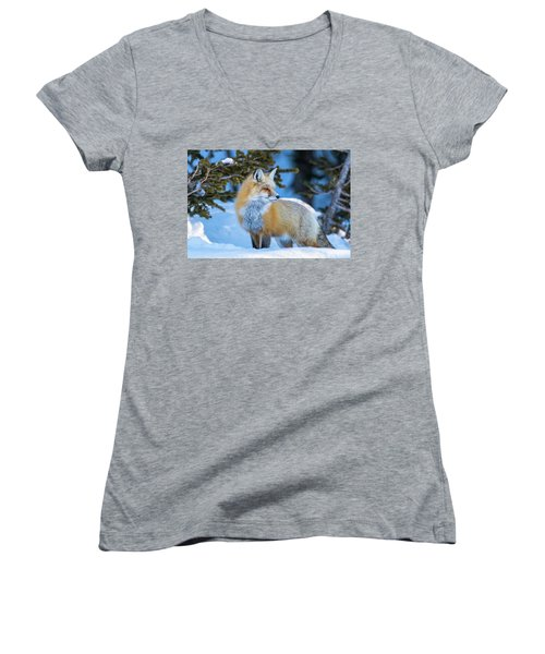 The Snow Beauty Women's V-Neck (Athletic Fit)