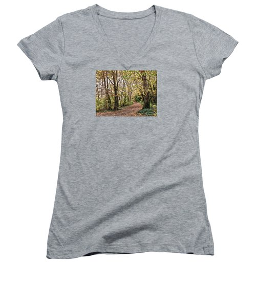 The Woods In Autumn Women's V-Neck T-Shirt (Junior Cut) by Mikki Cucuzzo