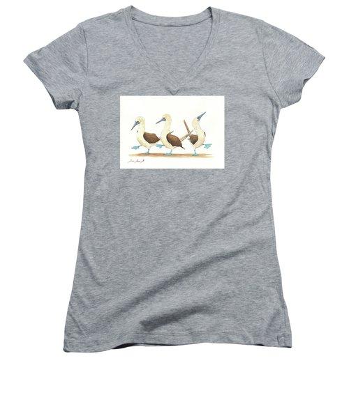 Three Blue Footed Boobies Women's V-Neck T-Shirt (Junior Cut) by Juan Bosco