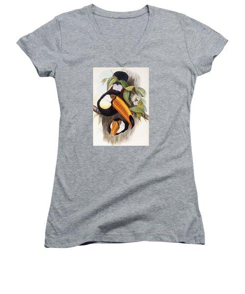 Toucan Women's V-Neck T-Shirt (Junior Cut) by John Gould
