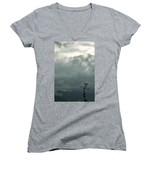 Tree And Mountain  Women's V-Neck T-Shirt (Junior Cut) by Rajiv Chopra