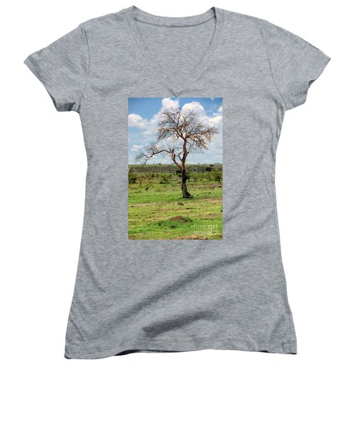 Women's V-Neck T-Shirt (Junior Cut) featuring the photograph Tree by Charuhas Images