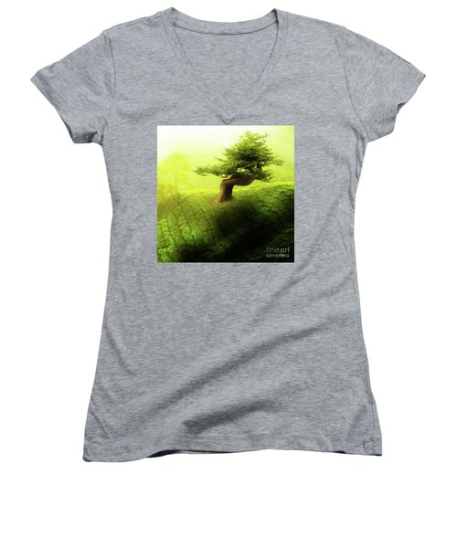 Tree Of Life Women's V-Neck T-Shirt (Junior Cut) by Mo T