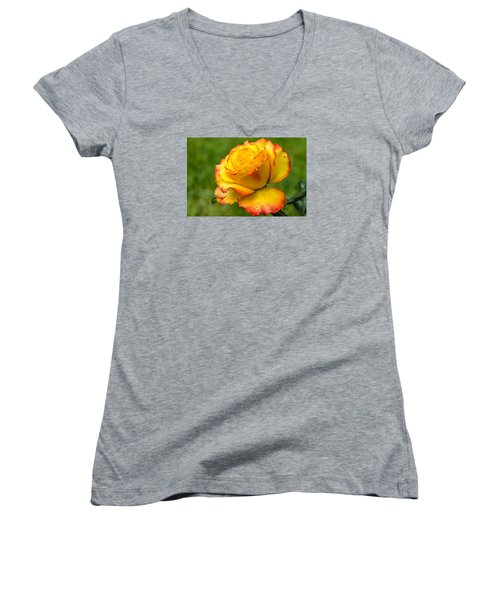 Two Toned Rose  Women's V-Neck T-Shirt (Junior Cut) by Martina Fagan