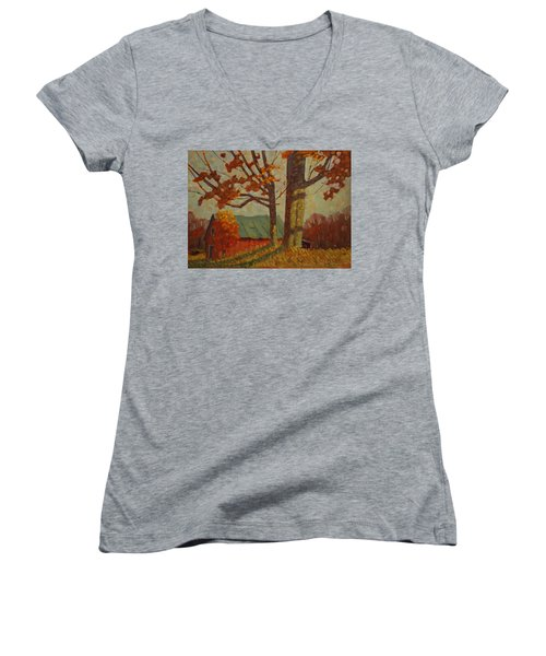 Upstate New York Women's V-Neck (Athletic Fit)