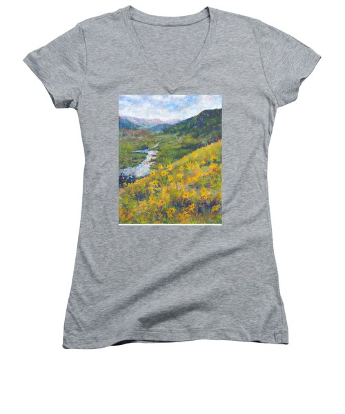 View From Baxters Gulch Women's V-Neck T-Shirt (Junior Cut) by Becky Chappell