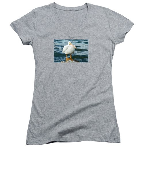White Pelican Women's V-Neck T-Shirt