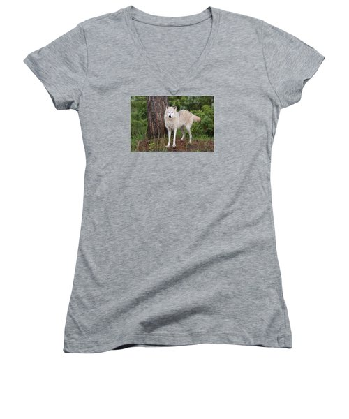 White Wolf. Women's V-Neck (Athletic Fit)