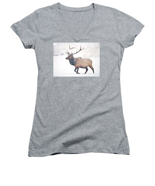 Women's V-Neck T-Shirt (Junior Cut) featuring the photograph Winter Bull by Mike Dawson
