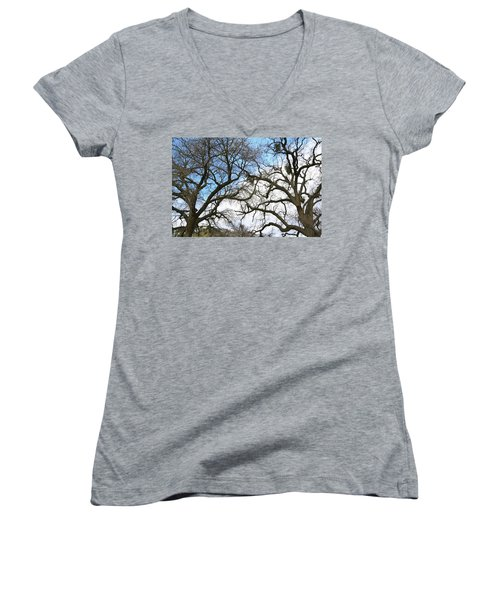Women's V-Neck T-Shirt (Junior Cut) featuring the photograph Winter Trees At Fort Tejon Lebec California  by Floyd Snyder