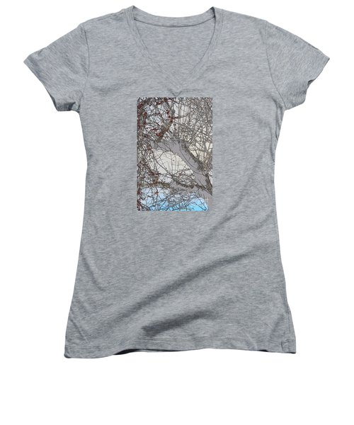 Witness Tree Women's V-Neck T-Shirt (Junior Cut) by Jesse Ciazza