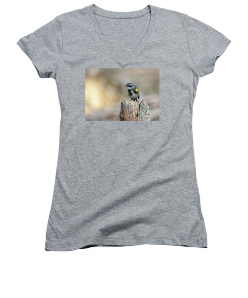 Yellow Rumped Warbler Women's V-Neck (Athletic Fit)