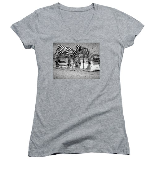 Zebras At The Watering Hole Women's V-Neck T-Shirt (Junior Cut) by Marion McCristall