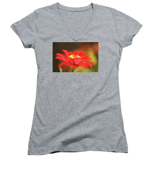 Women's V-Neck T-Shirt (Junior Cut) featuring the photograph Zinnia by Donna G Smith