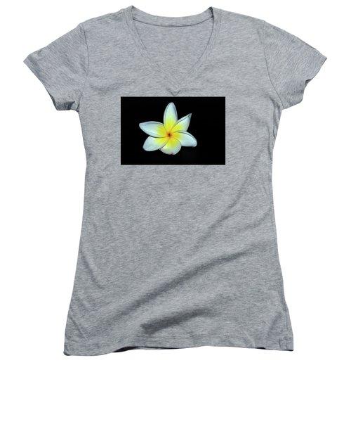 Plumaria Women's V-Neck T-Shirt