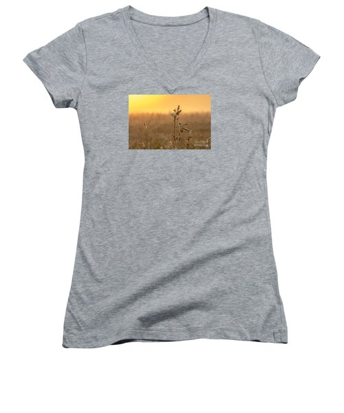 Women's V-Neck T-Shirt (Junior Cut) featuring the photograph Meadow Flowers by Odon Czintos