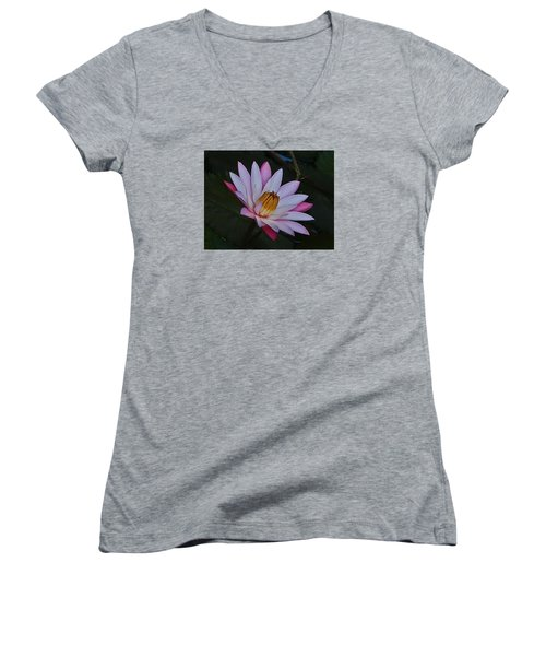 Water Lilly Women's V-Neck T-Shirt (Junior Cut) by Ronald Olivier
