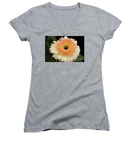 Beautiful Gerber Women's V-Neck T-Shirt (Junior Cut) by Elvira Ladocki