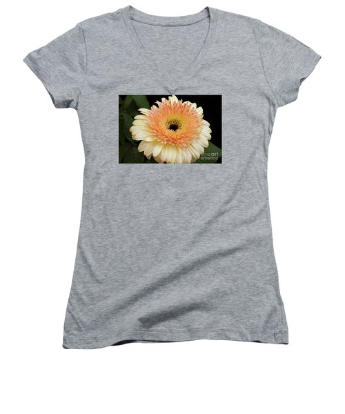 Beautiful Gerber Women's V-Neck T-Shirt