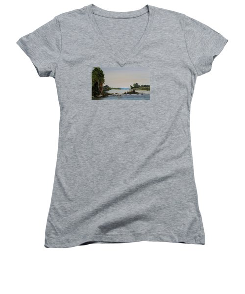 Women's V-Neck T-Shirt (Junior Cut) featuring the painting 19 Geese by Marilyn  McNish