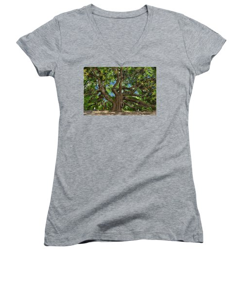 Angel Oak Women's V-Neck T-Shirt (Junior Cut) by Jim Hubbard