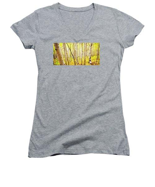 Aspen Grove II Women's V-Neck T-Shirt