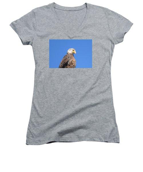 Bald Eagle Juvenile Perched Women's V-Neck