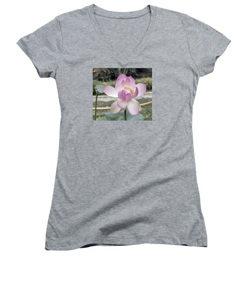 Women's V-Neck T-Shirt (Junior Cut) featuring the photograph Beautiful Indian Lotus by Odon Czintos
