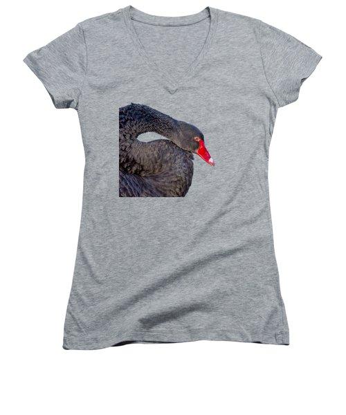Black Swan Women's V-Neck T-Shirt (Junior Cut) by Scott Carruthers