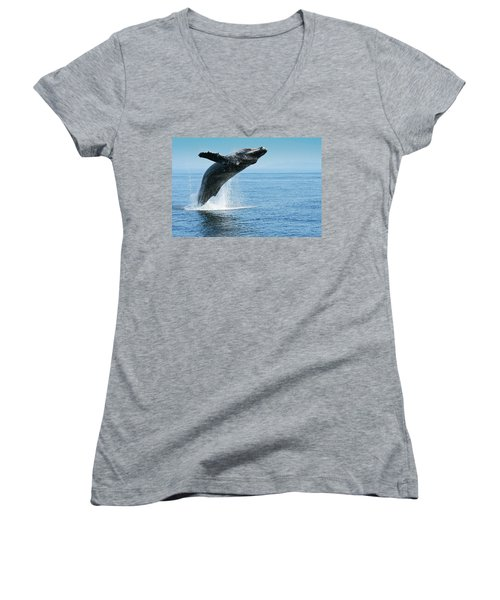 Women's V-Neck featuring the photograph Breaching Humpback Whales Happy-1 by Dorothy Darden