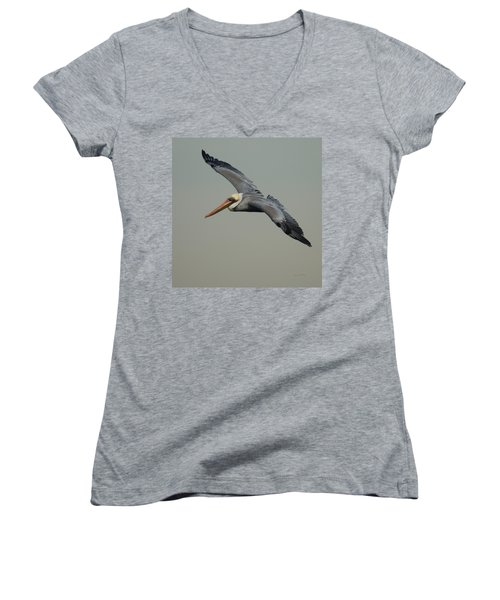 Brown Pelican Women's V-Neck T-Shirt