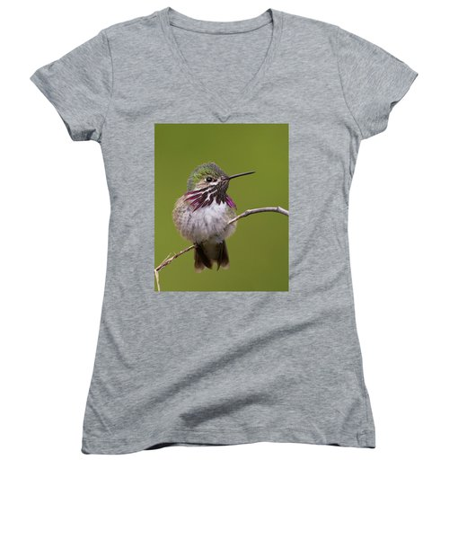 Calliope Hummingbird Women's V-Neck T-Shirt (Junior Cut)