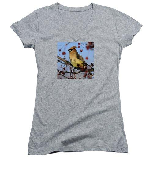 Cedar Waxwing... Women's V-Neck T-Shirt (Junior Cut) by Nina Stavlund
