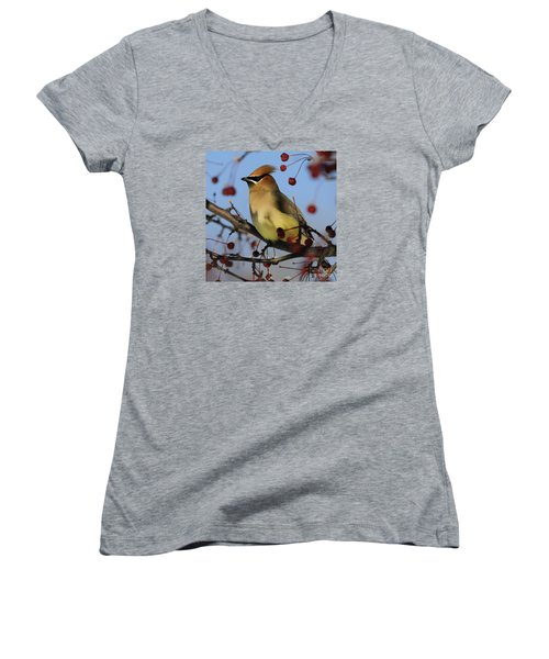 Cedar Waxwing... Women's V-Neck (Athletic Fit)