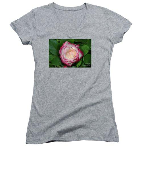 Cherry Parfait Rose Women's V-Neck T-Shirt (Junior Cut) by Glenn Franco Simmons