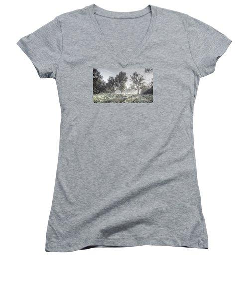 Colorful Autumn Landscape Women's V-Neck T-Shirt (Junior Cut) by Odon Czintos