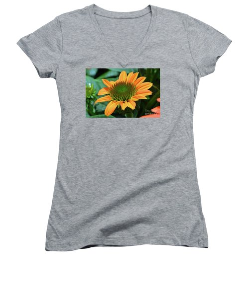 Coneflower  Women's V-Neck T-Shirt (Junior Cut)