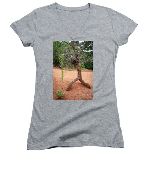Garden Of The Gods Women's V-Neck T-Shirt