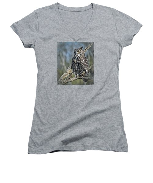 Women's V-Neck T-Shirt (Junior Cut) featuring the photograph Great Horned Owl by Elaine Malott