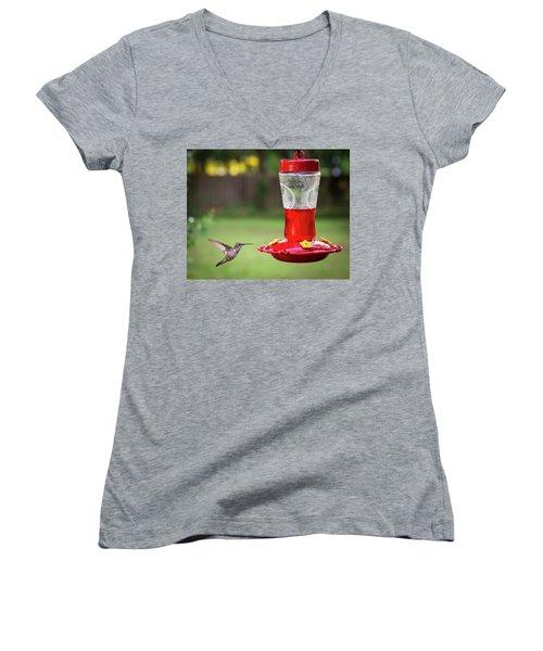 Hummingbird Women's V-Neck T-Shirt (Junior Cut) by Denis Lemay