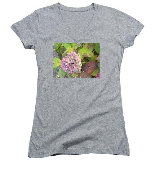 Hydrangea Women's V-Neck T-Shirt (Junior Cut) by Kay Gilley