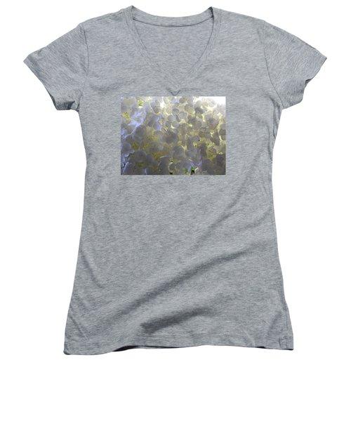 Let The Sunshine In Women's V-Neck T-Shirt