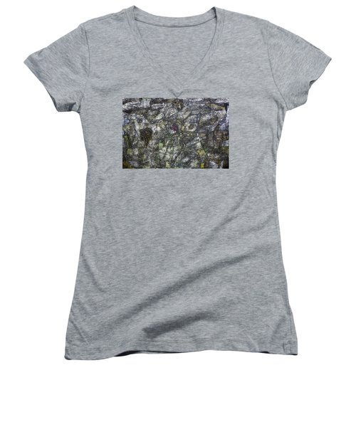 Loved And Lost Women's V-Neck T-Shirt