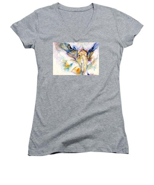 Marie's Eagle Women's V-Neck T-Shirt